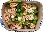 Роза кустовая Sweet Sara (Свит Сара)